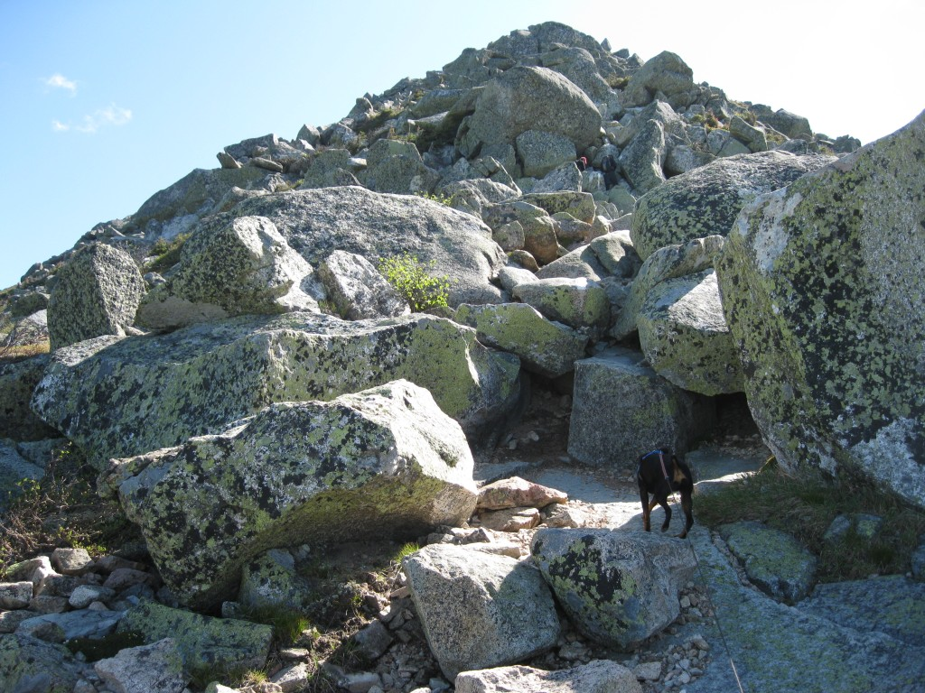 photographed by Nichole Hastings, Hunt Trail, Mount Katahdin, Baxter State Park, ME, May 30, 2010.